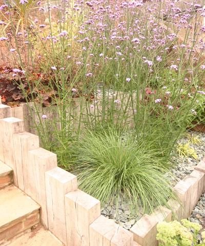 Rain garden landscape design article mark laurence fine for Garden design east sussex
