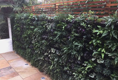 living wall garden design London