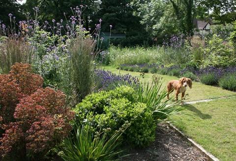 Garden Design Wimbledon SW19