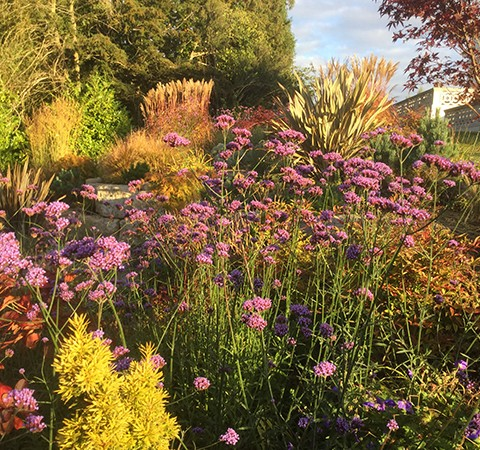 english country garden, late flowering perennials