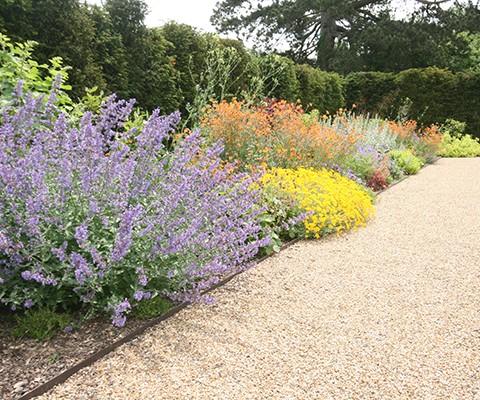 garden design kent, herbaceous border