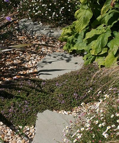 garden stepping stone paths