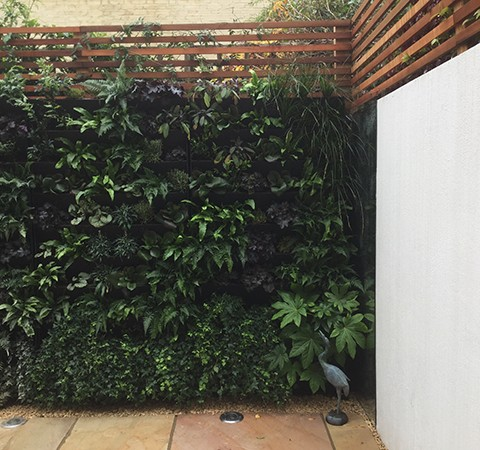 green wall, wall planter