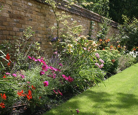 herbaceous perennial mixed flower border