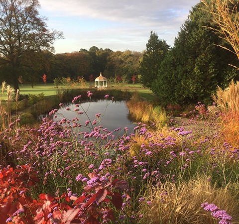 large garden ideas, late season flowering & autumn colour