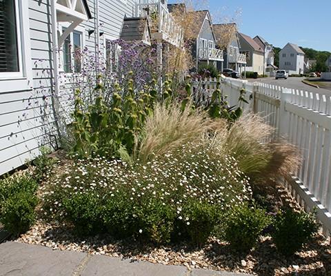 small garden design, front garden