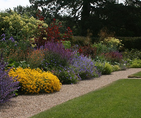summer colour in a country garden with hardy perennial plants
