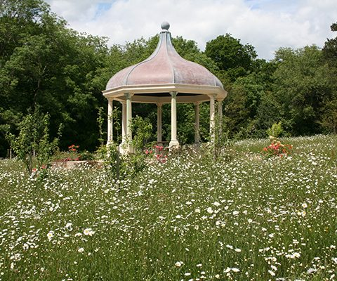 temple focal point with wildflower seed mix